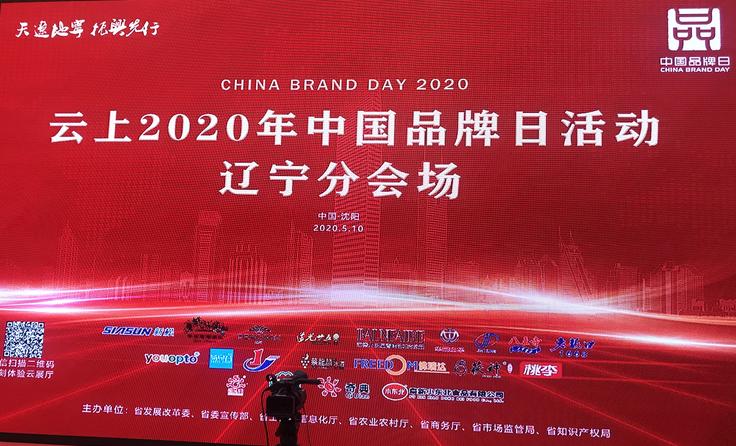 """岭bob直播软件集团参展""""云上2020年中国品牌日""""活动"""